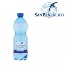 Acqua frizzante bottiglia PET 500ml San Benedetto (conf. 24 )