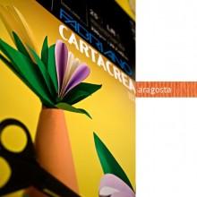 Blister 10Fg Cartoncino 35X50Cm 220Gr Aragosta Cartacrea Fabriano