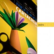 Blister 10Fg Cartoncino 35X50Cm 220Gr Cedro Cartacrea Fabriano
