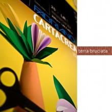 Blister 10Fg Cartoncino 35X50Cm 220Gr Terra Bruciata Cartacrea Fabriano