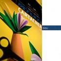 Blister 10Fg Cartoncino 35X50Cm 220Gr Blu Cartacrea Fabriano