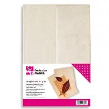 Confezione da 10 fogli carta riso 50x70cm bianco CWR