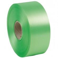 Nastro liscio 6800 50mmx100mt colore verde chiaro 10 Brizzolari