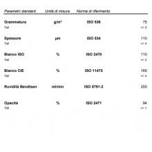 Carta per fotocopie A4 Disco 2 up 75 gr Burgo Distribuzione risma 500 fogli (Pallet 300 risme)