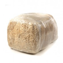 Paglietta legno 100gr