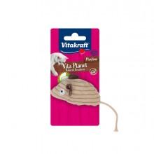 Gioco topolino con catnip per gatti