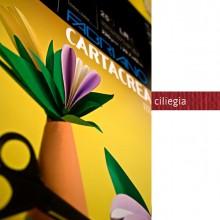 Blister 10Fg Cartoncino 35X50Cm 220Gr Ciliegia Cartacrea Fabriano