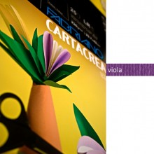 Blister 10Fg Cartoncino 35X50Cm 220Gr Viola Cartacrea Fabriano