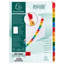 Separatore Numerico 1-12/A4 Maxi In Cartoncino 160Gr Exacompta