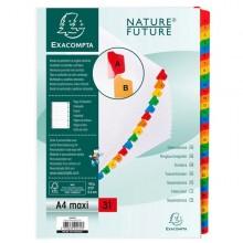 Separatore Numerico 1-31/A4 Maxi In Cartoncino 160Gr Exacompta